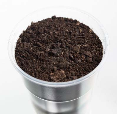 soil test for success